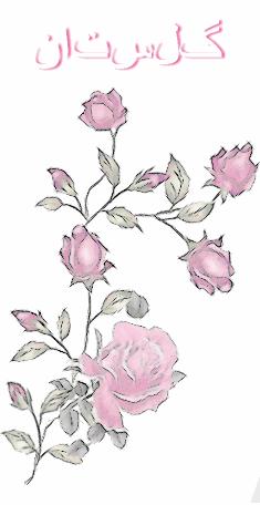 fleurs iran